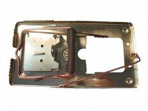 Мышеловка металлическая - средство от мышей